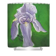 Wet Iris Shower Curtain