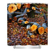 Wet Logs Shower Curtain