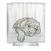 Wet Rottie Pup Shower Curtain