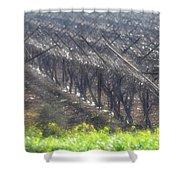 Wet Vineyard Shower Curtain