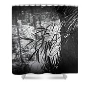 Wet Winter Shower Curtain