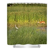 Wetland Life Shower Curtain