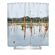 Wetlands At Sunrise Shower Curtain