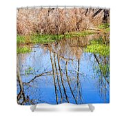 Wetlands Viewing Area In Chatfield State Park Shower Curtain
