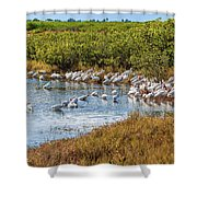 Wetlands Watering Hole Shower Curtain