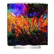 Whacked Out Quadrant Shower Curtain