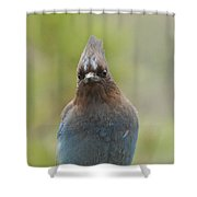 Whadda You Lookin At Shower Curtain