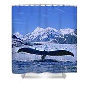 Whale Fluke Shower Curtain