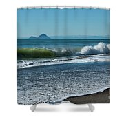 Whale Island Shower Curtain