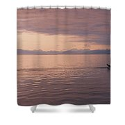 Whale Tail At Surface Shower Curtain