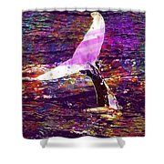 Whale Tail Ocean Animal Sea Water  Shower Curtain