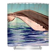 Whale Tail    Pastel   Sold Shower Curtain
