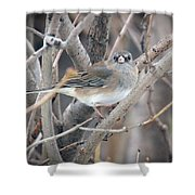 What Another Photo Shower Curtain