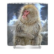 What Did You Just Say? Shower Curtain