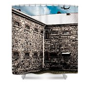 What Freedom Means Shower Curtain