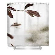 What Is Left Shower Curtain
