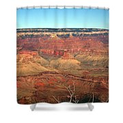 Whata View Shower Curtain