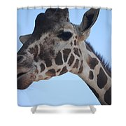 Whatcha Looking At? Shower Curtain