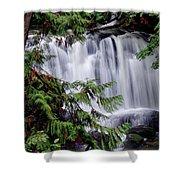 Whatcom Falls Cascade Shower Curtain