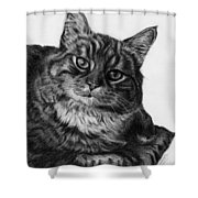 What's For Dinner Shower Curtain by Jyvonne Inman