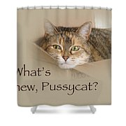 What's New Pussycat - Lily The Cat Shower Curtain