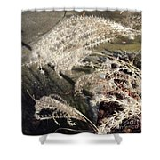 Wheat Feathers Shower Curtain