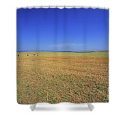 Wheat Field After Harvest Shower Curtain