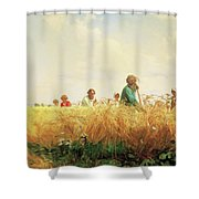 Wheat Field In The Summer Shower Curtain