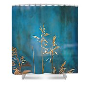 Wheat On Blue 1 Shower Curtain