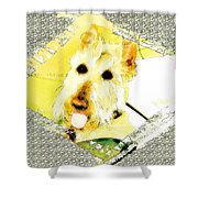 Wheaten Scottish Terrier - During Sickness And Health Shower Curtain