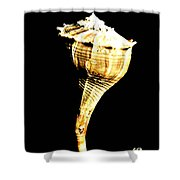 Whelk Sea Shell Shower Curtain