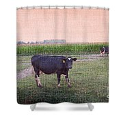 When I Finish My Dinner I'll Deal With You Shower Curtain