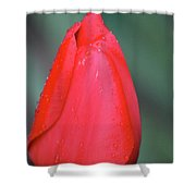 When Sorrow Like Sea Billows Roll... It Is Well With My Soul Shower Curtain