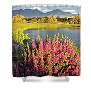 When The Rains Come In The Desert So Do The Blooms Shower Curtain