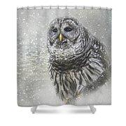 When Winter Calls Owl Art Shower Curtain