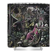 When Wizards Dream Shower Curtain