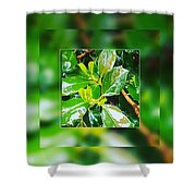 When You're Thirsty... Drink Shower Curtain