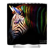 When Zebras Dream 7d8908 Square Shower Curtain