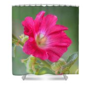 Where Flowers Bloom So Does Hope Shower Curtain