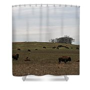 Where The Buffalo Roam 2 Shower Curtain