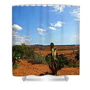 Where The Cactus Grow Shower Curtain