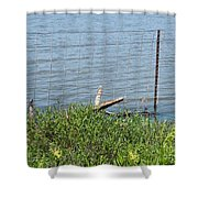Where The Fence Ends Shower Curtain
