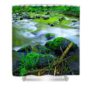 Where The Golden Waters Flow Shower Curtain