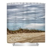 Where The Sea Turtles Nest Shower Curtain
