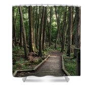 Where The Sidewalk Ends Shower Curtain