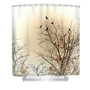 Where To Go From Here... Shower Curtain