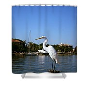 Where's Lunch Shower Curtain