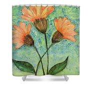 Whimsical Orange Flowers - Shower Curtain