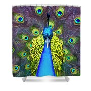 Whimsical Peacock Shower Curtain