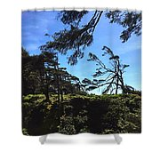 Whimsical Trees Shower Curtain